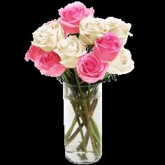 Pink&White Long Stemmed Roses